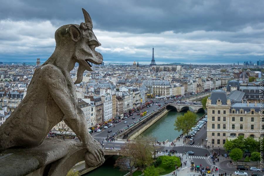 תמונה של הגרגוילס המפורסמים בכנסית נוטרה-דאם | פריס ,צרפת | בלוג הצילום של עופר קידר | ראיתי עיר עוטפת אור - חופשה בפריס