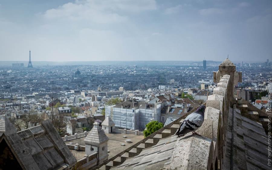 תמונת נוף של פריס מה-מונמרטרה (Montmartre )פריס, צרפת   ראיתי עיר עוטפת אור - חופשה בפריז   בלוג הצילום של עופר קידר