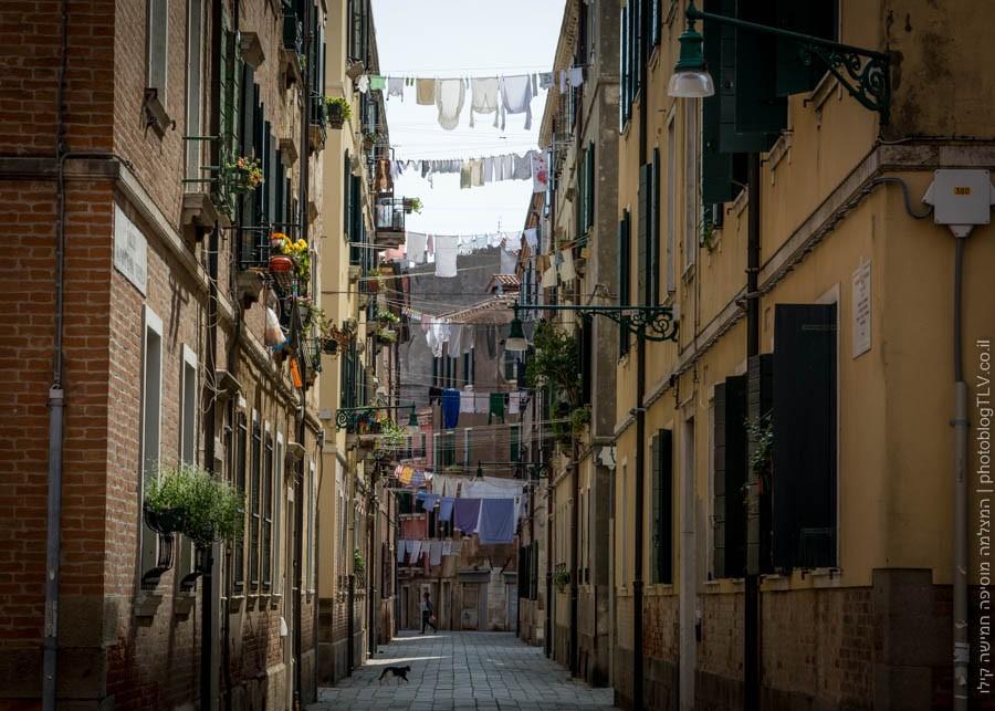 אטרקציות בונציה: השכונות סביב מתחם הביאנלה לאמנות, ונציה, איטליה | בלוג הצילום של עופר קידר
