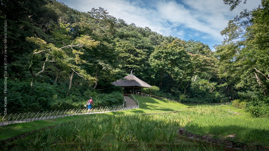 טוקיו, יפן | המצלמה מוסיפה חמישה קילו | בלוג הצילום של עפר קידר