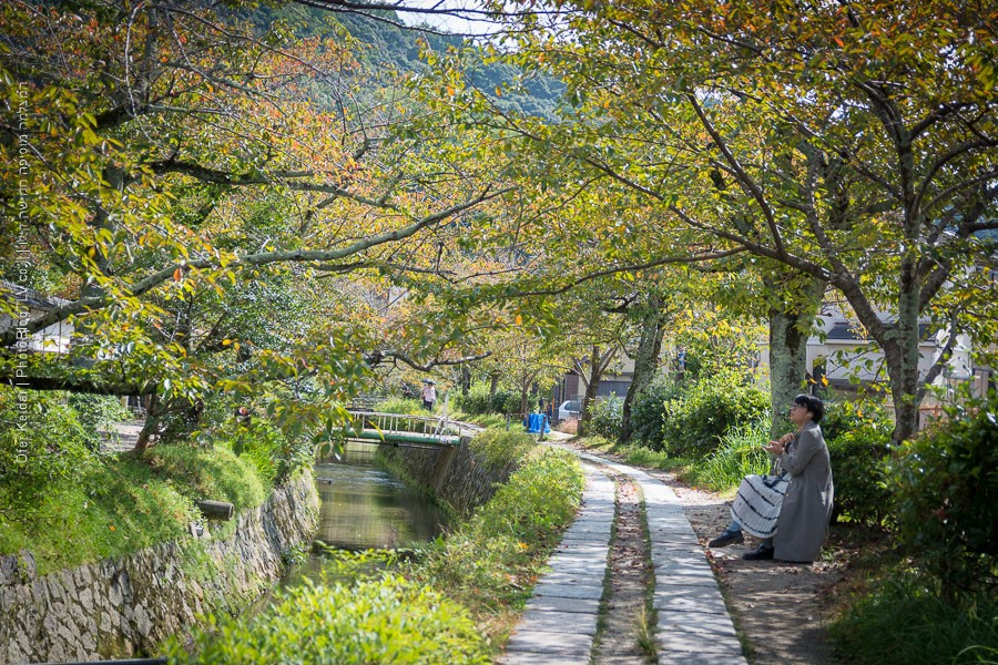 קיוטו, יפן | Kyoto, Japan | דרך הפילוסוף | המצלמה מוסיפה חמישה קילו | בלוג הצילום של עופר קידר