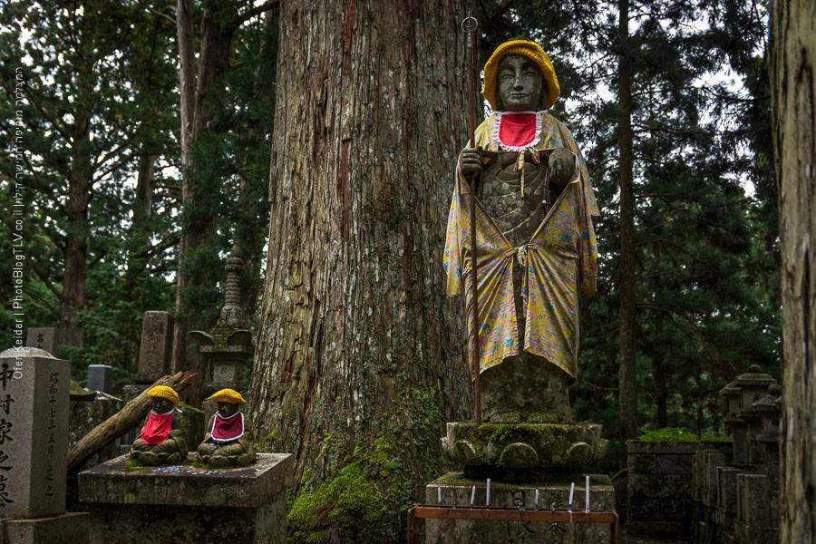 אוסקה להר קויה סאן בשעתיים | Kyoto, Japan| המצלמה מוסיפה חמישה קילו