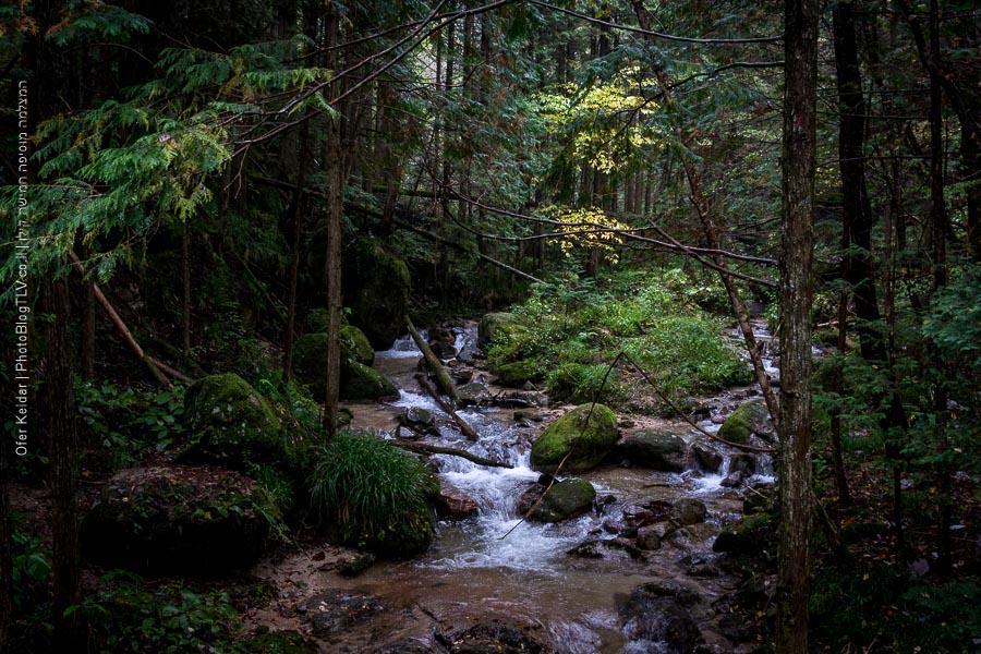 קיסו, עמק הקיסו | טיול ליפן | Kiso Valley, Japan| המצלמה מוסיפה חמישה קילו | בלוג הצילום של עפר קידר