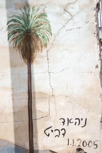 טיול לרמלה | רמלה העתיקה | המצלמה מוסיפה חמישה קילו | עפר קידר